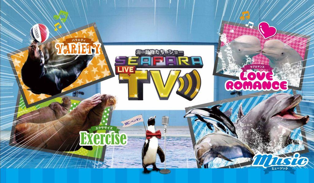 海の動物たち SEAPARA TVショー