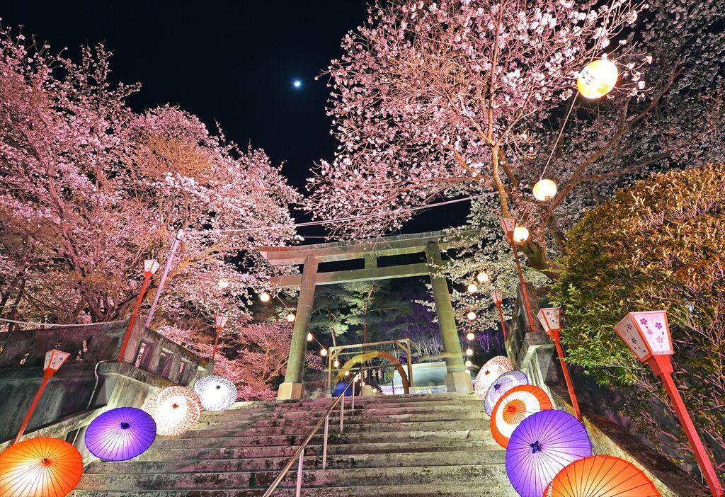 鬼怒川温泉夜桜お花見