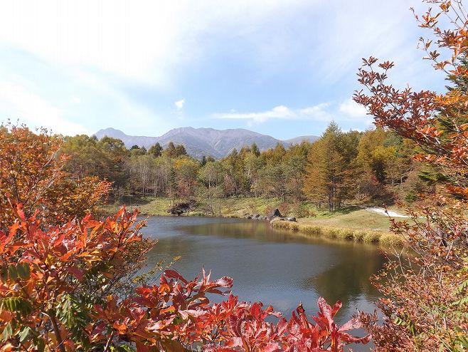 秋の美鈴池