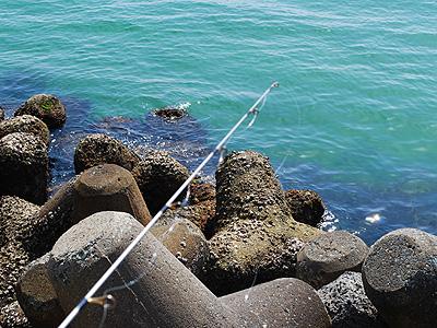 手軽に海釣りを満喫 イメージ