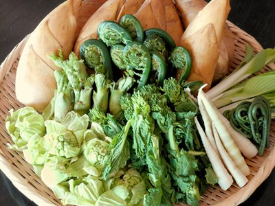 春の味覚、山菜料理が付いた和会席♪(イメージ)