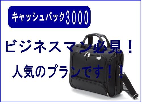 キャッシュバック¥3000!!