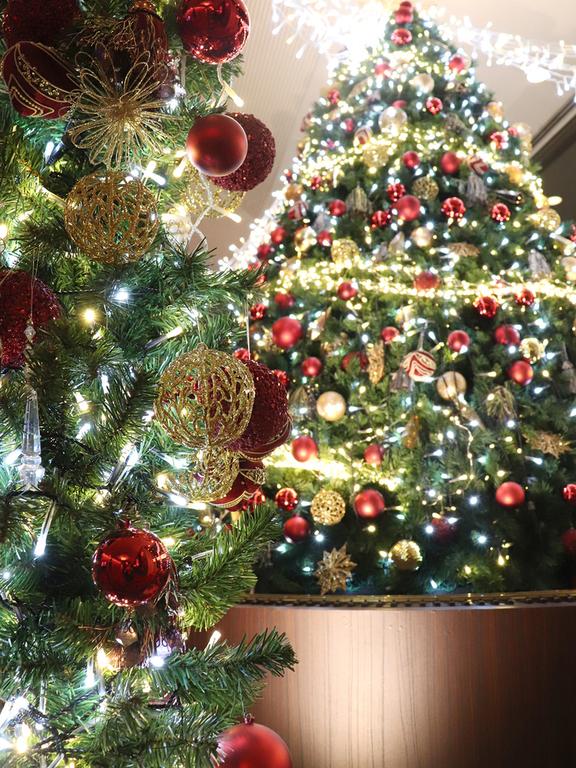 【季節のロビー装飾でお出迎え】(11〜12月) クリスマス