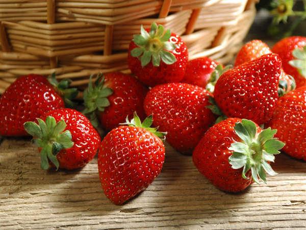穫りたての大粒苺を堪能!