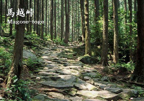 世界遺産「熊野古道」馬越峠