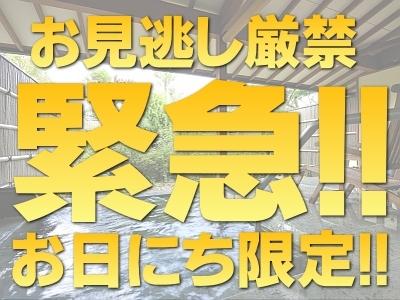 お日にち限定のスペシャルプライス!