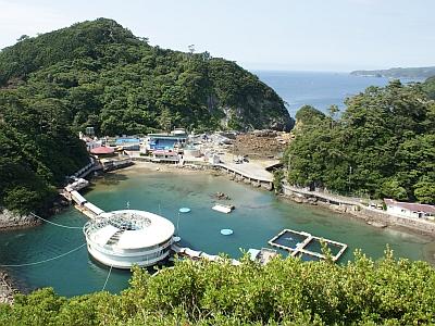 入り江を利用した国内でも大変珍しい水族館です