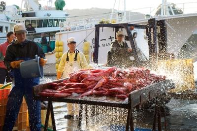 【歳時記】6月は特産金目鯛を思い切り楽しむきんめ祭!