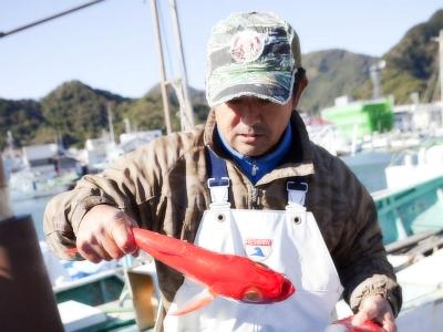 地場で水揚げされた日本一の金目鯛をご賞味下さい!