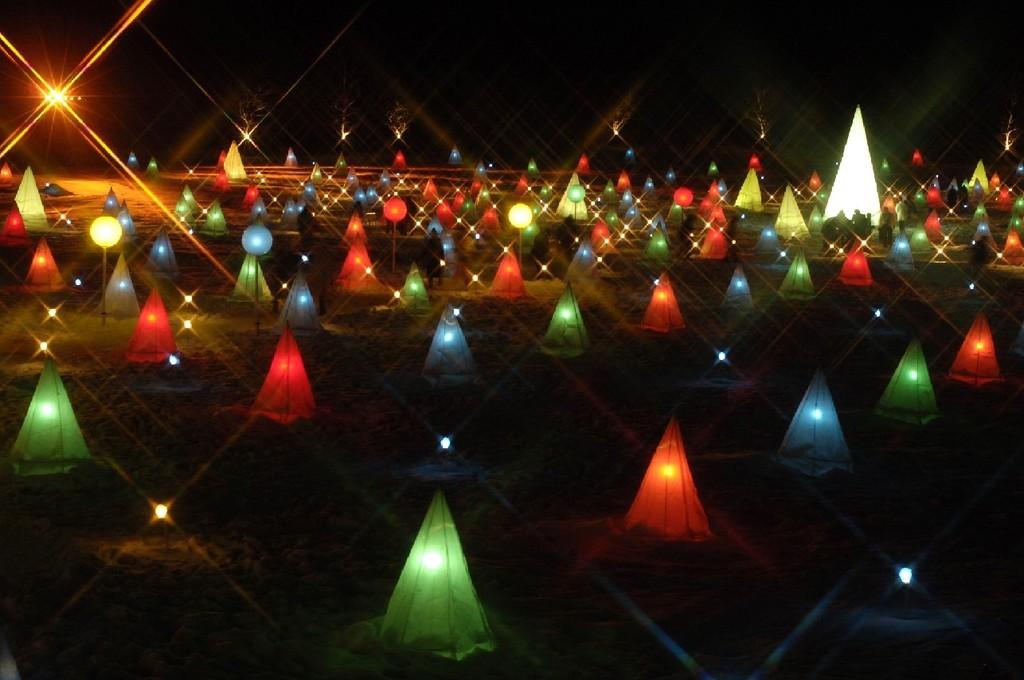 光と音のファンタジックショー♪幻想的な「彩凛華」