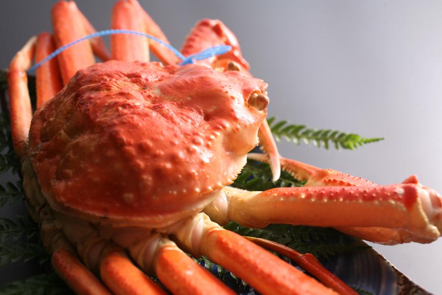 タグ付き茹で姿蟹
