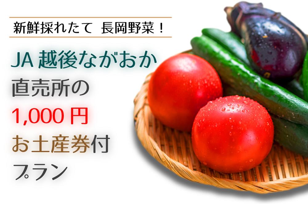 なじらーて野菜プランロゴ