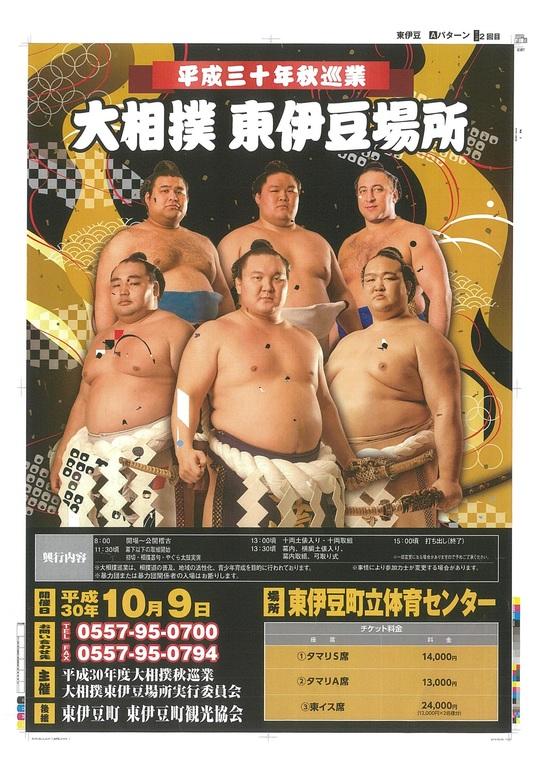 大相撲 東伊豆場所
