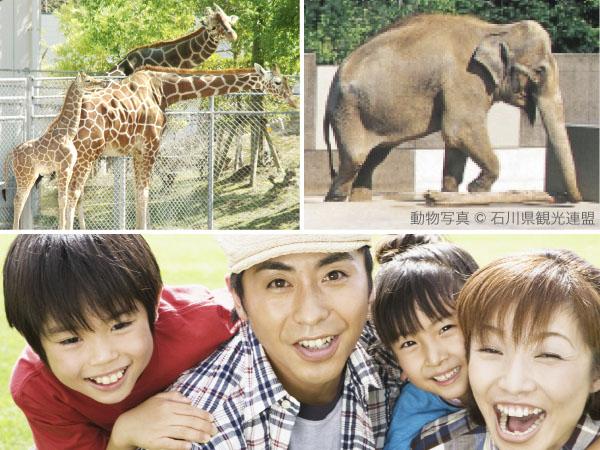 自然に囲まれた広大な園内で沢山の動物と出会えるいしかわ動物園