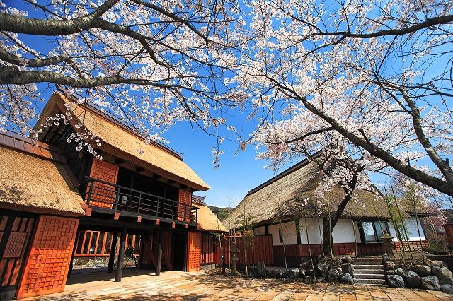 春(長屋門・くつろぎ亭)