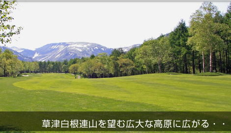 涼しい高原で爽快プレイ