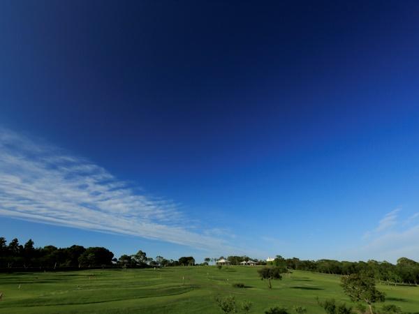 芝生が広がるてふてふの丘で思いっきり体を動かしたり