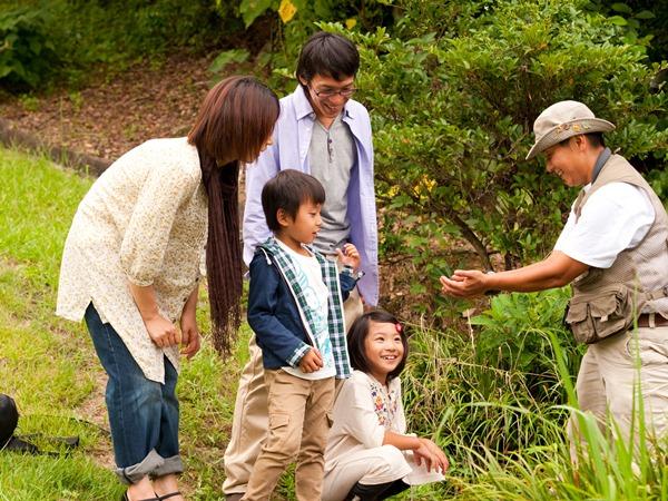 当リゾートの自然案内人による、里や水辺の自然観察会をお楽しみいただけます