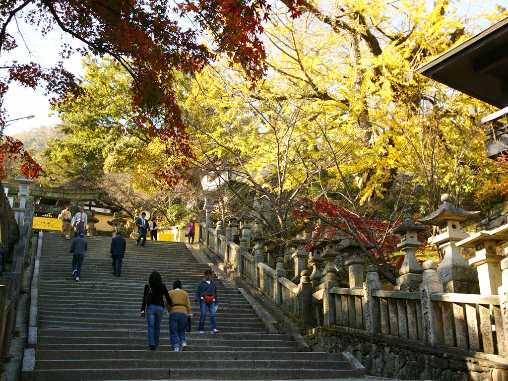 【金刀比羅宮 表参道】大勢の参拝客で賑わう秋の行楽シーズン
