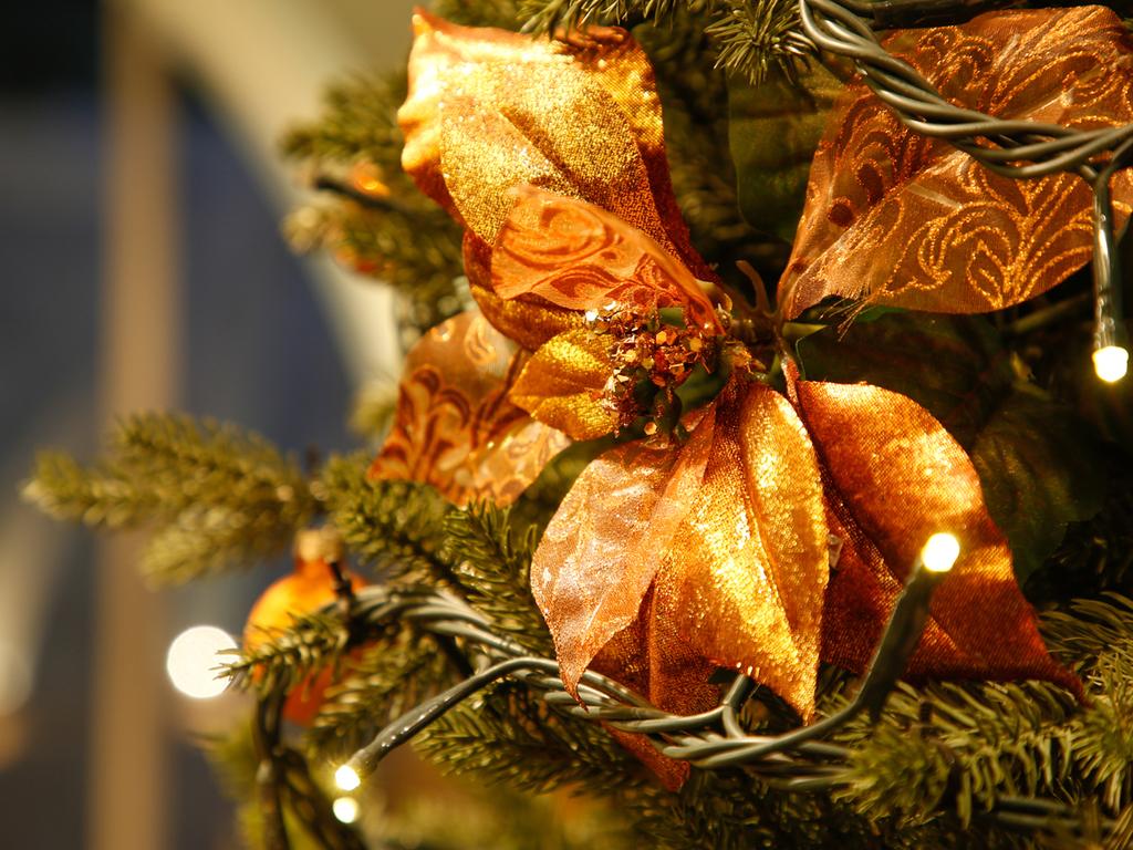 今年のクリスマスは誰と過ごしますか?