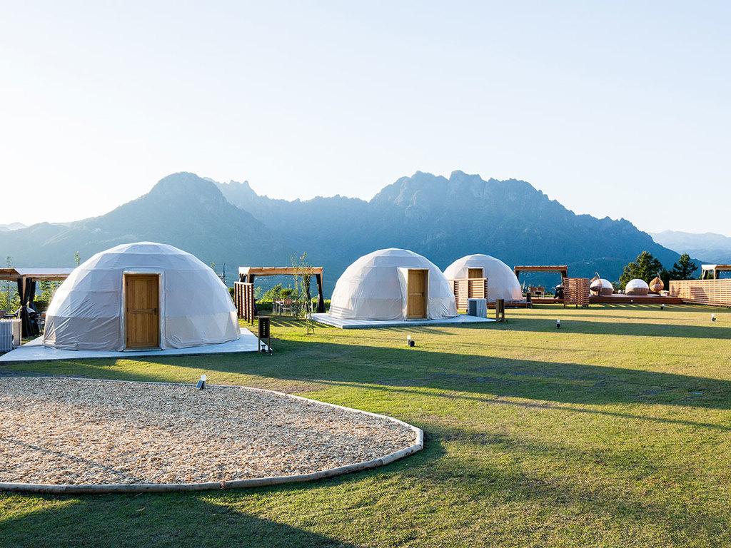 ユニークなドーム型のテント