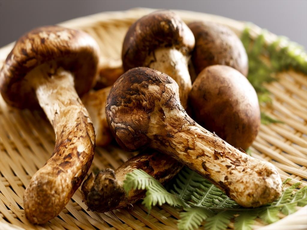 秋の味覚といえば「松茸」。お好みの日本酒をお供にお楽しみ下さい。(画像はイメージです)