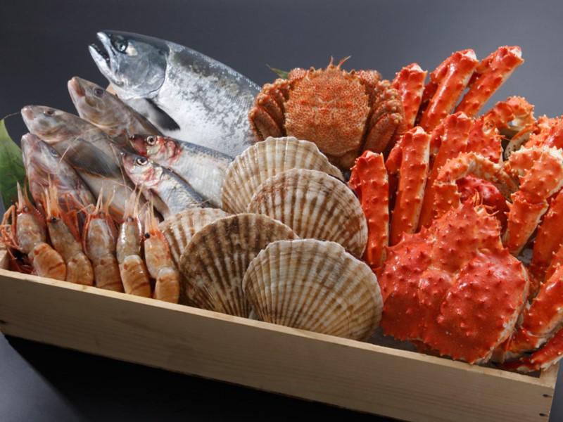 札幌の思い出に旬の海産物はインスタ映えするかも?(イメージ)