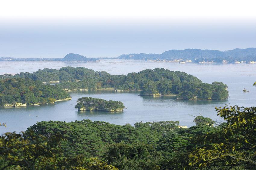 松島湾のイメージ