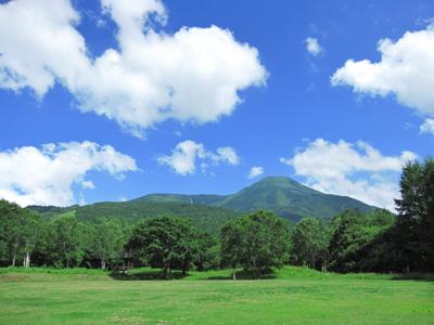 青い空と緑の木々に気分爽快です