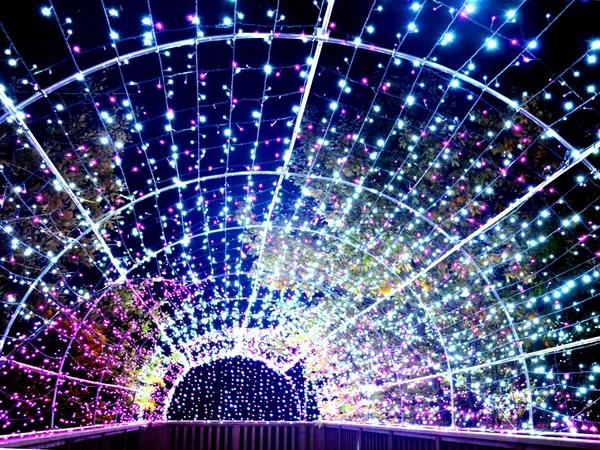 光の森のページェント〜7つの宝石の秘密〜