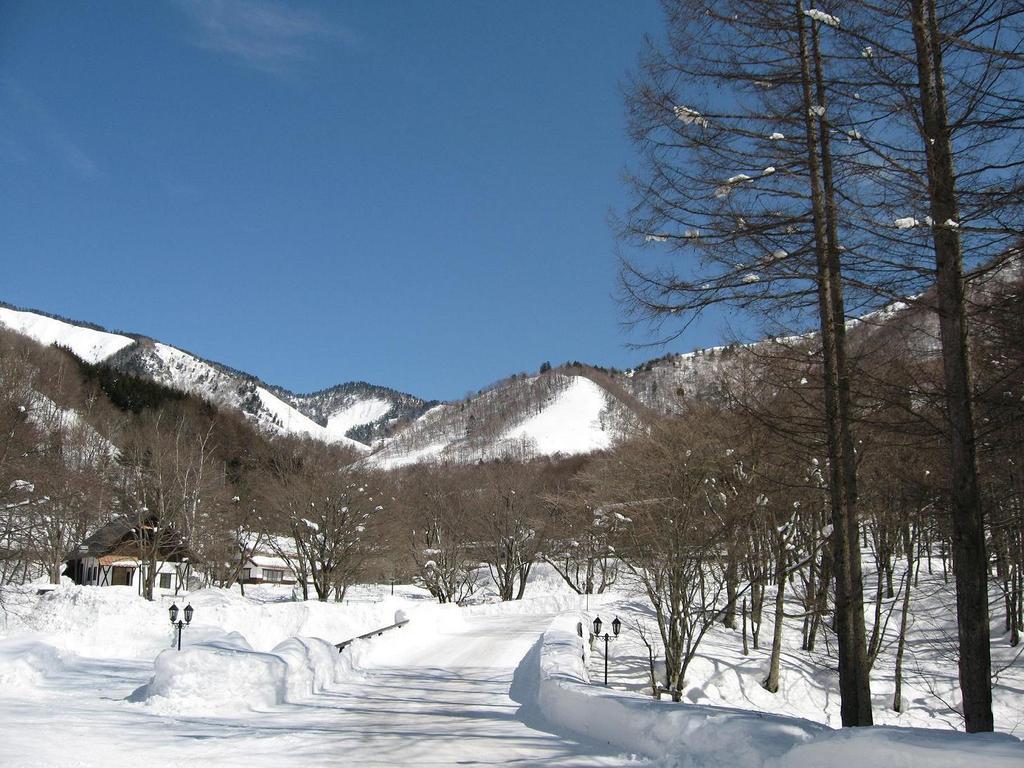 ホテル敷地内雪景色
