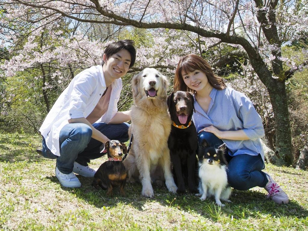 【戌年記念プラン販売】わんパラは小型犬〜超大型犬までどんなワンコも大歓迎!家族揃ってお越し下さい♪
