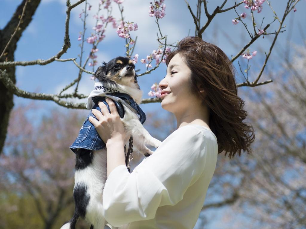 ワンちゃんと春の伊豆高原をお楽しみ下さい♪