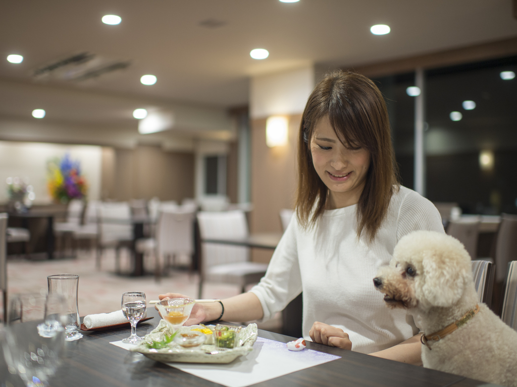 レストランでは愛犬も一緒に♪