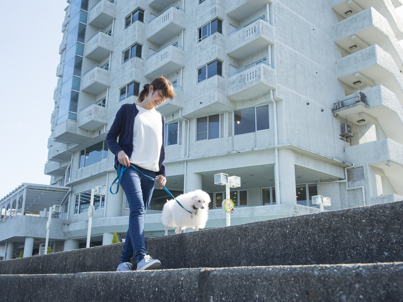 海の近くでお散歩♪