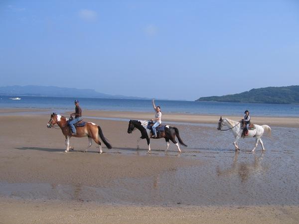 乗馬体験 千里が浜 ※イメージ画像