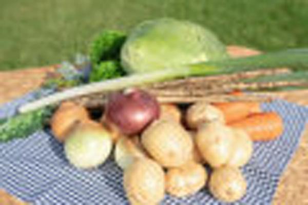 2020年の洞爺湖の野菜で免疫力UP♪