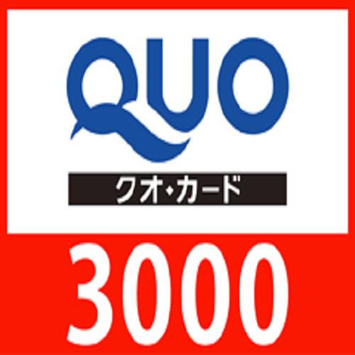 3,000円QUOカード付プラン