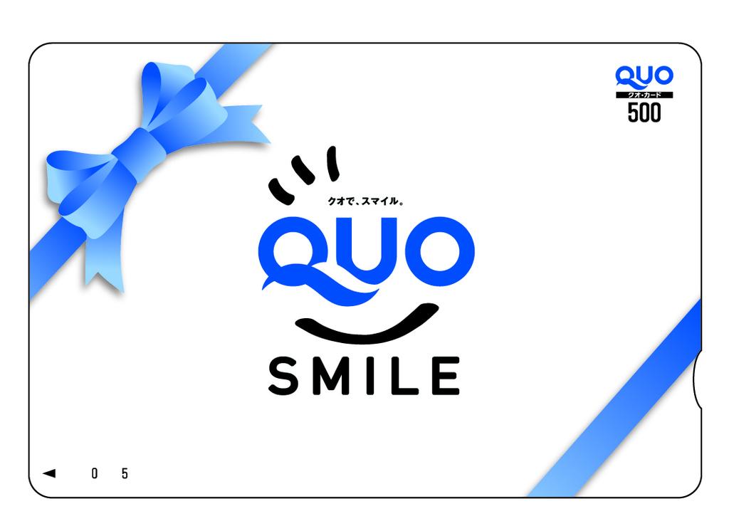 プラン【QUO500】