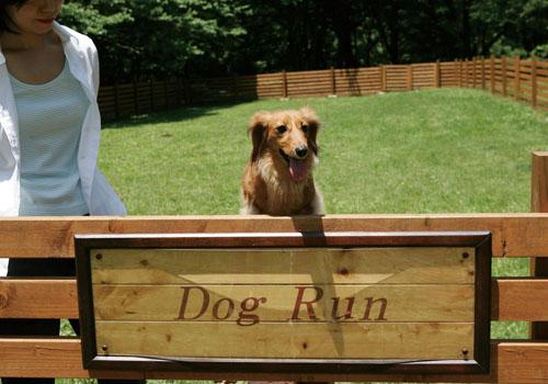 自由にご利用いただける「ドッグ・ラン」で、愛犬と戯れる至福のひとときを。