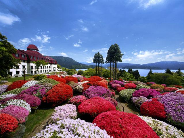 色鮮やかに咲き誇る山のホテルのつつじ庭園(イメージ)