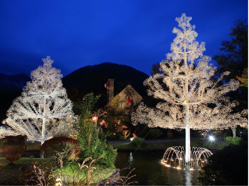 箱根ガラスの森美術館のクリスマスツリー(夕方)