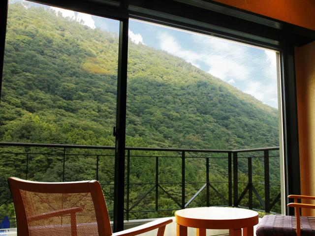 和室ス−ペリア、和座敷付きツインル−ムから見る湯坂山の風景