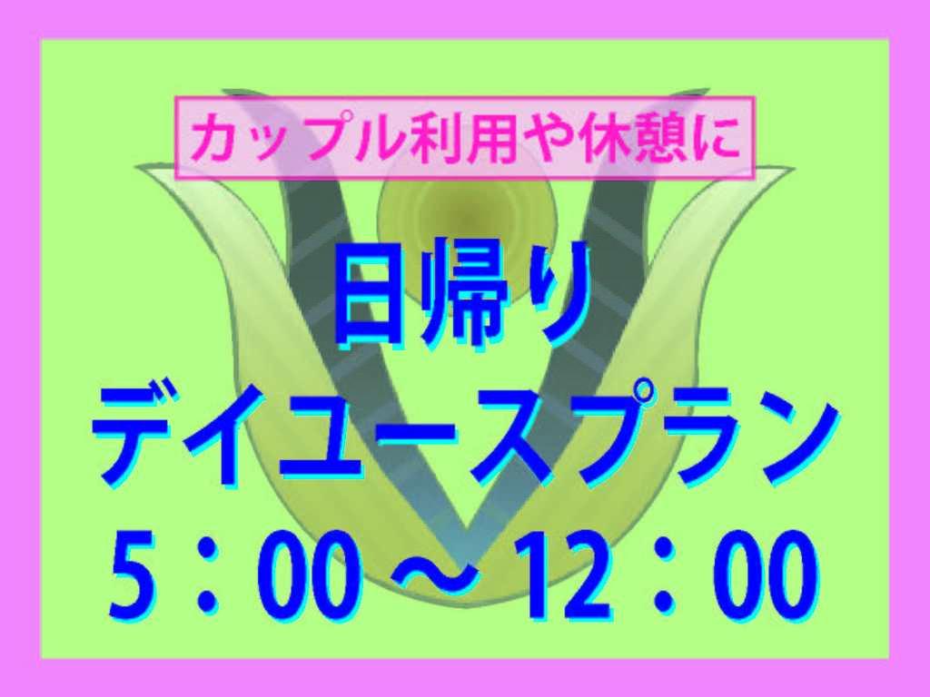 デイユース 5:00〜12:00