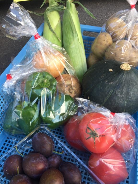 伊藤農園さんの地元野菜お土産