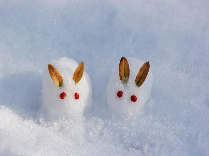 冬の旅行&ビジネスに嬉しい特典付きプラン
