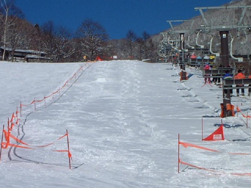 素泊まりスキーで気ままにスキー♪