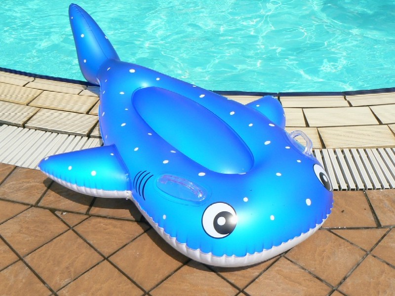 毎年人気のフロート特典♪海もプールも楽しんで