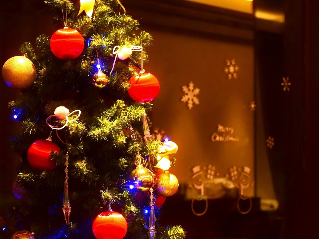 大人におすすめクリスマスプラン