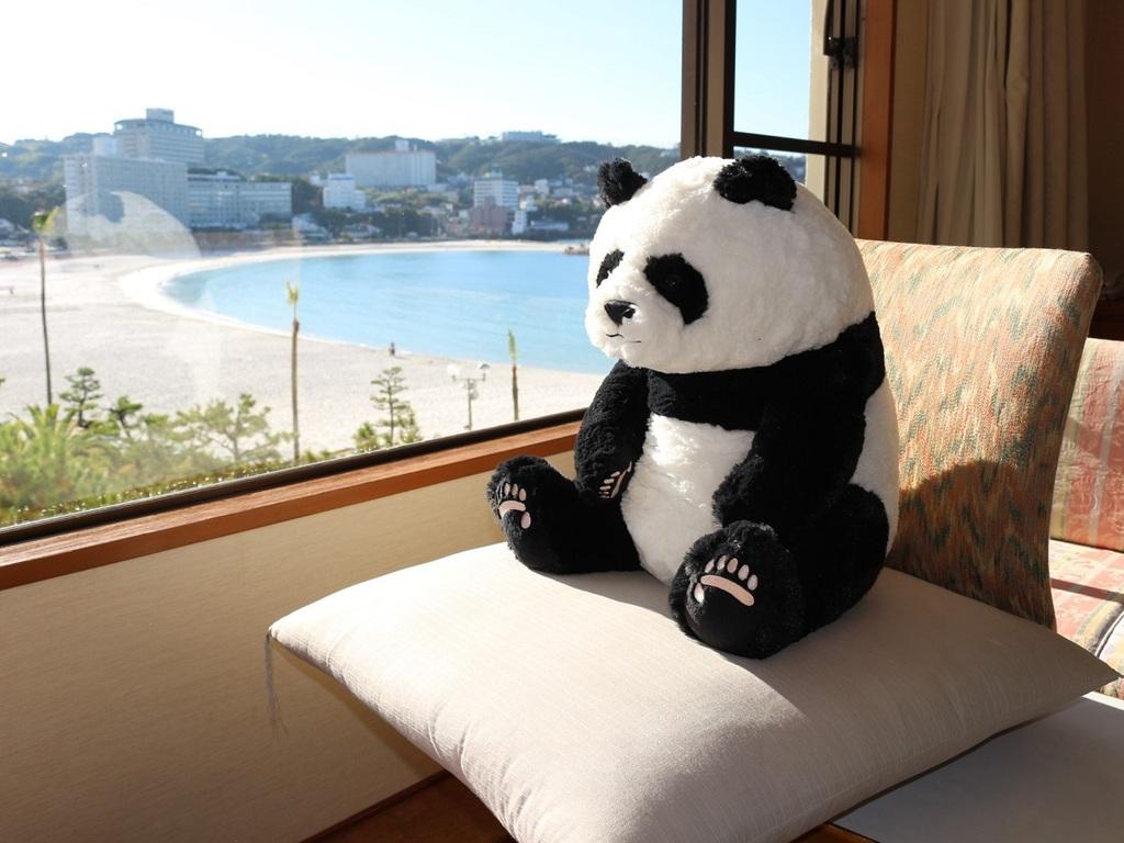 海の癒しとパンダの癒しでほっこり(※本画像の撮影は他の部屋タイプです)